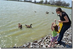 Feeding the Ducks 011