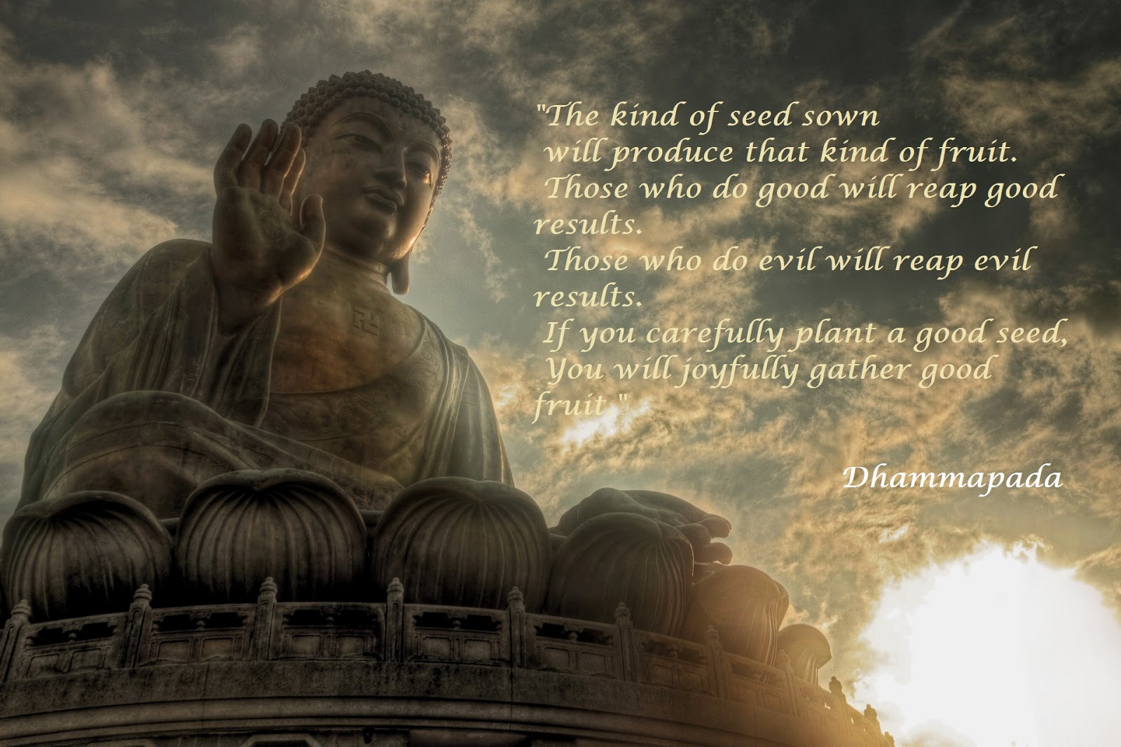 Buddha Life Quotes Buddha Quotes On Life  Quotes Links