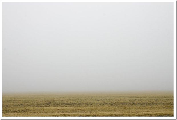 041219_fog