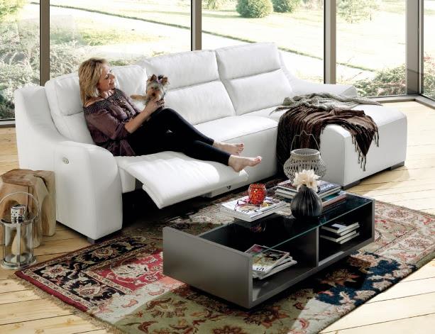Limpieza del sof con perros y gatos - Limpieza de sofas de tela ...