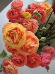 Sunset-hued ranunculus.