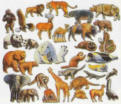 أسماء الحيوانات ومعلومات عنها 20130403182251_50422