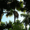 seychelles6_20070412_1254360480.jpg