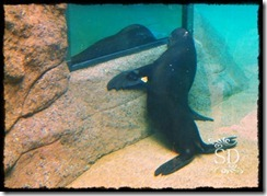 ZooTrip5-16-12a