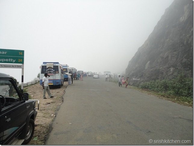 munnar tour 081