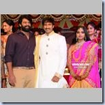 Gopichand Wedding 16_t
