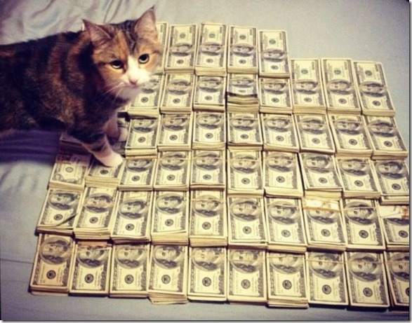 rich-wealthy-cats-14