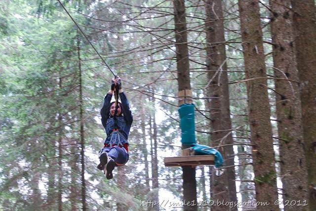 agility sugli alberi 3