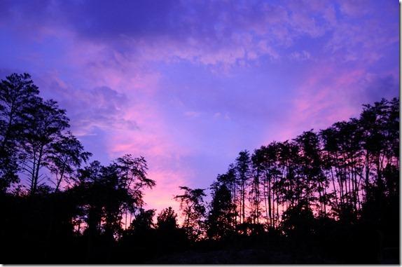 PNP sunset621-7