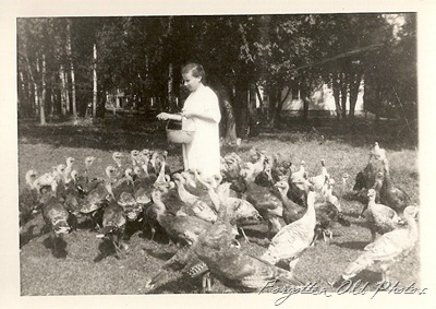 Farming Turkeys two DL antiques