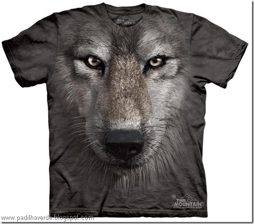 camisetas de Montain-17