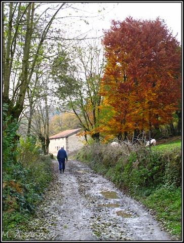 Lantz otoño 024