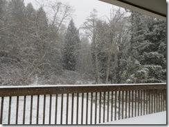 snow day 01