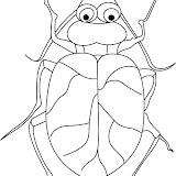 beetle-coloring-page-2.jpg
