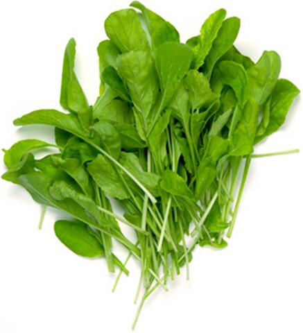 arugula-larger
