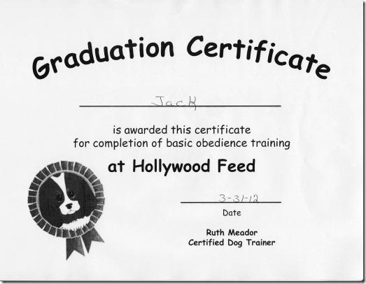 jack diploma