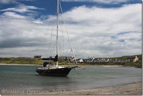 19-yacht