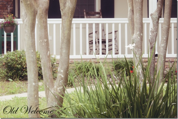 crepe myrtle porch rocker old welcome
