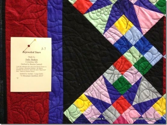 MountainQuiltFest_Mar2014 034