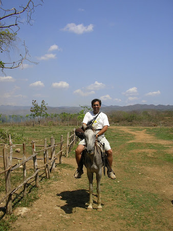 What to do in Cuba: Ride a horse in Valle de los Ingenios