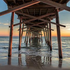 Under the Pier by Carol Plummer - Buildings & Architecture Bridges & Suspended Structures (  )