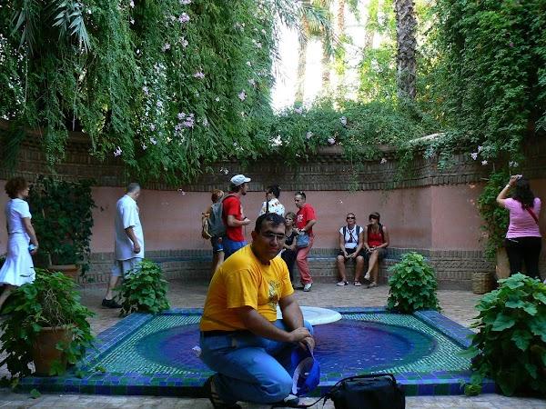 Imagini Marrakech: Jardin Majorelle