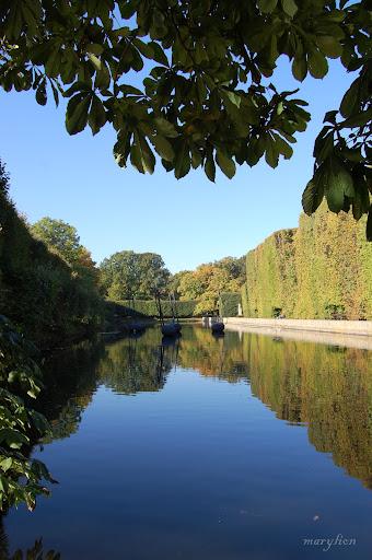 oliwa. Oct 2, 2010. Photos: 39