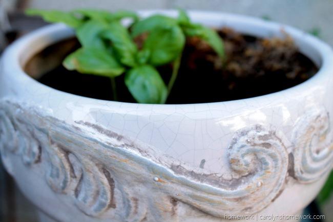 Lifestyle Crafts Herb Pot via homework - carolynshomework (1)