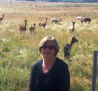 pam and alpacas on sheep barn road