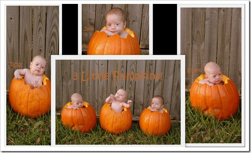 triplet pumpkin collage