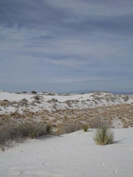 NM white sand2