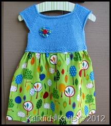 SaraM Dress (2)