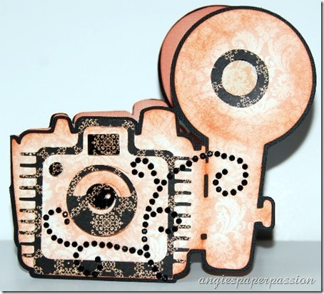 Old Camera (1)