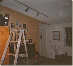ladder kitty