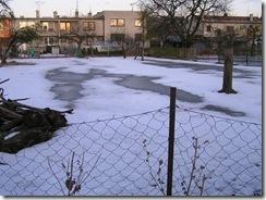 potopa včeliček 20,02,2012 042