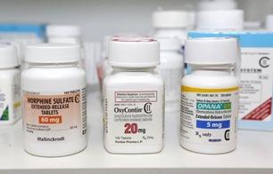 la-sci-fda-opioid-narcotic-pain-20130910-001