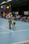 20130510-Bullmastiff-Worldcup-0464.jpg