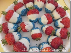 The Backyard Farmwife- 4th of July treats
