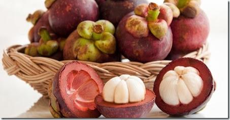 khasiat buah manggis