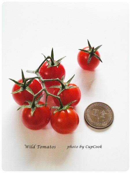 tomato (18)