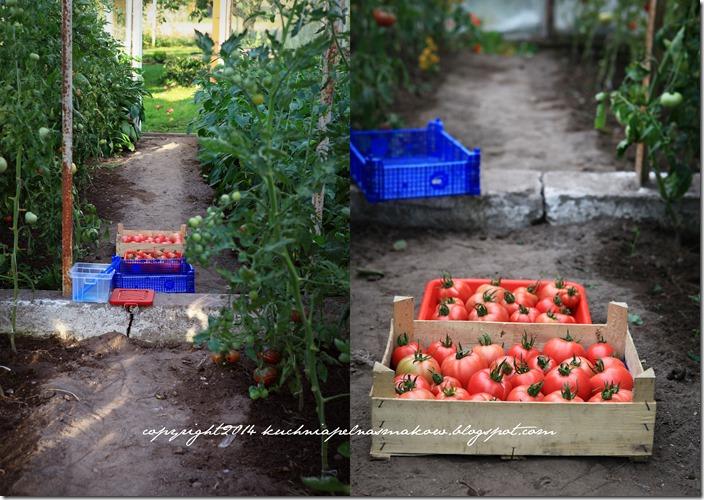 Pomidory mojej mamy i tarta z pomidorami  w wersji klasycznej i bezglutenowej7