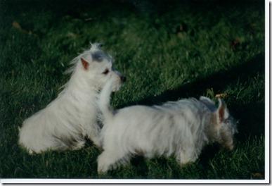 1997_11 Max und Mandy 03