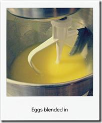 eggs blended