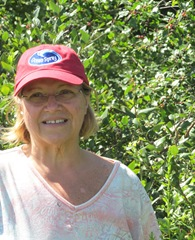 Betty Ann picking blueberries 7.30.13