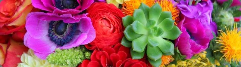 expert panel sophisticated floral designs 1381816_565648723500382_1377923993_n