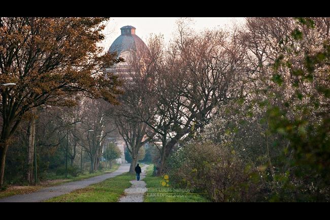 20111023-HOLLAND-D80-0021