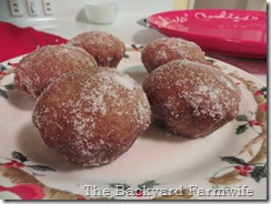 cider muffins - The Backyard Farmwife