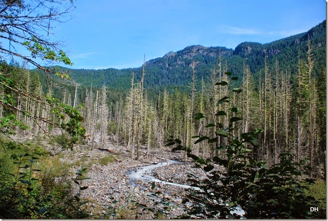09-28-14 A Rainier NP (35)