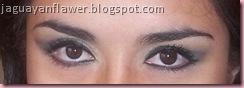 Pavorreal - ojos abiertos