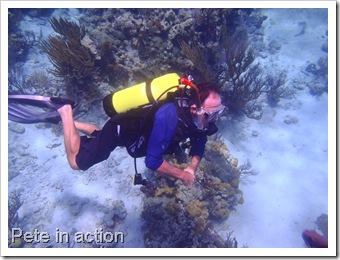 Exuma Sea Park Dive 167